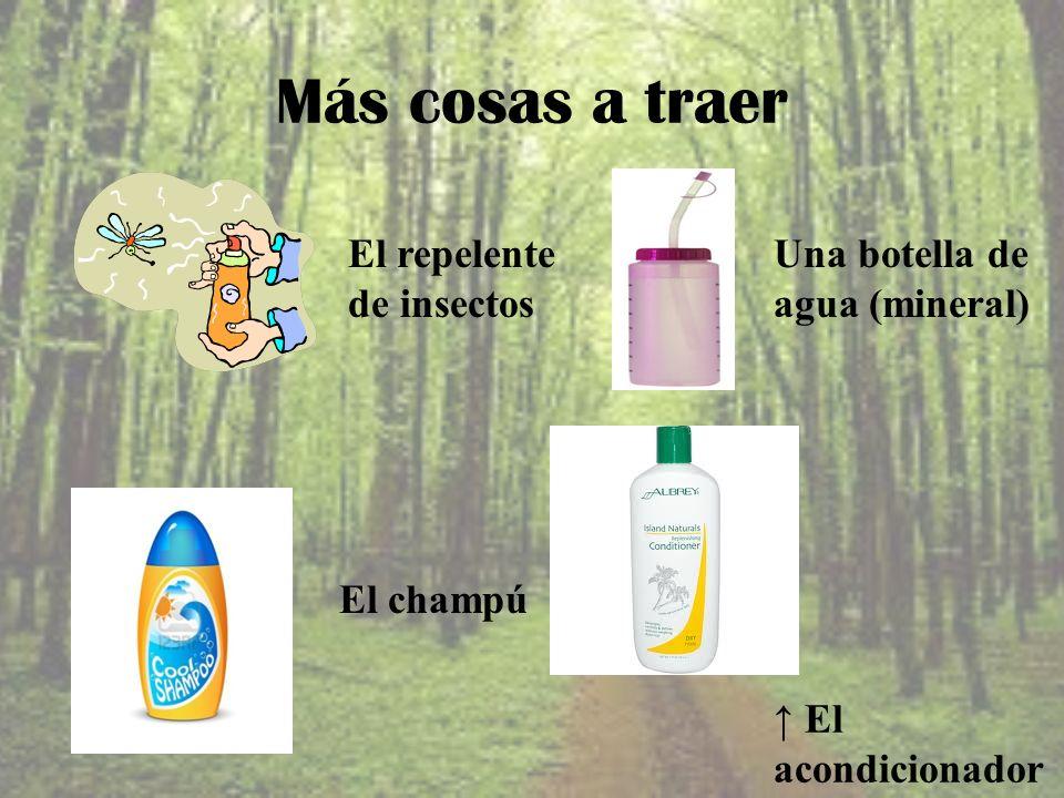 Más cosas a traer El repelente de insectos Una botella de agua (mineral) El champú El acondicionador