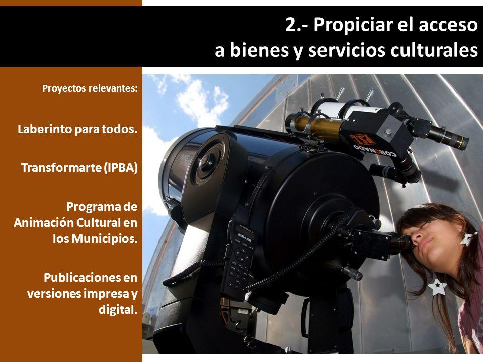 Proyectos relevantes: Laberinto para todos. Transformarte (IPBA) Programa de Animación Cultural en los Municipios. Publicaciones en versiones impresa