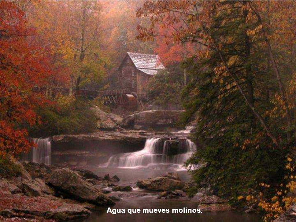Agua que esculpes paisajes.