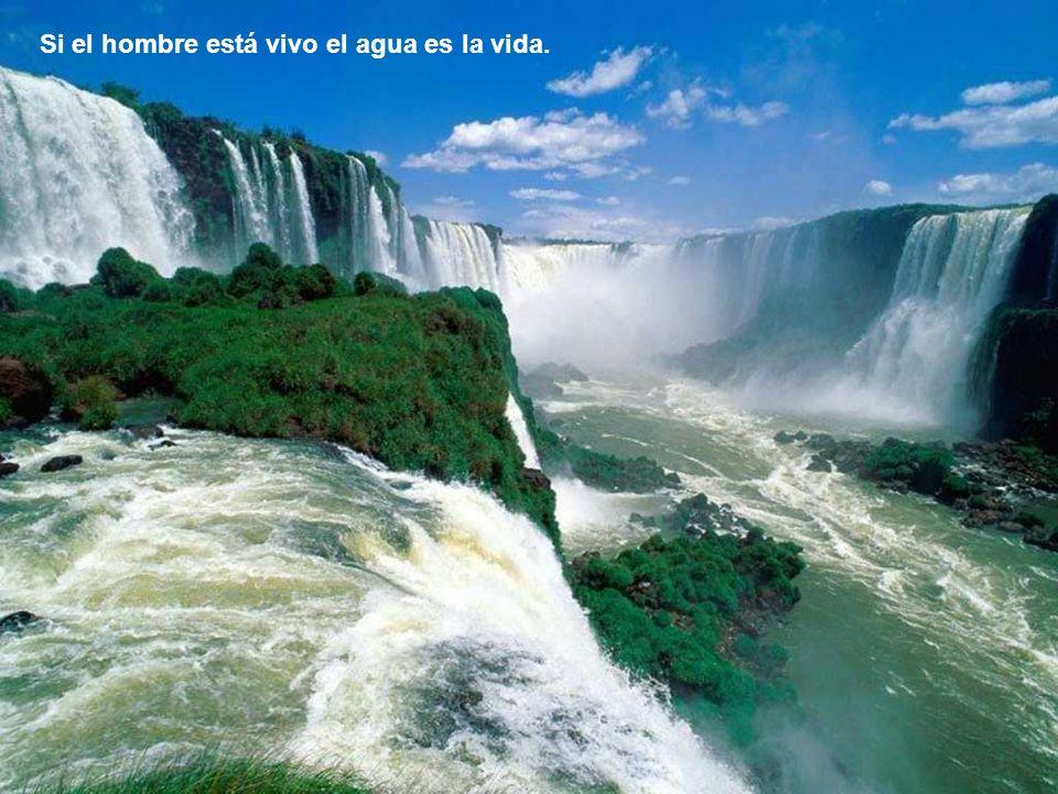 Si el hombre está vivo el agua es la vida.