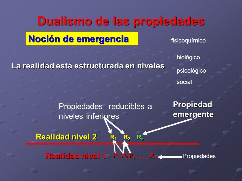 Dualismo de las propiedades Noción de emergencia La realidad está estructurada en niveles Realidad nivel 1 P2P2P2P2 PnPnPnPn P3P3P3P3 P1P1P1P1... Prop