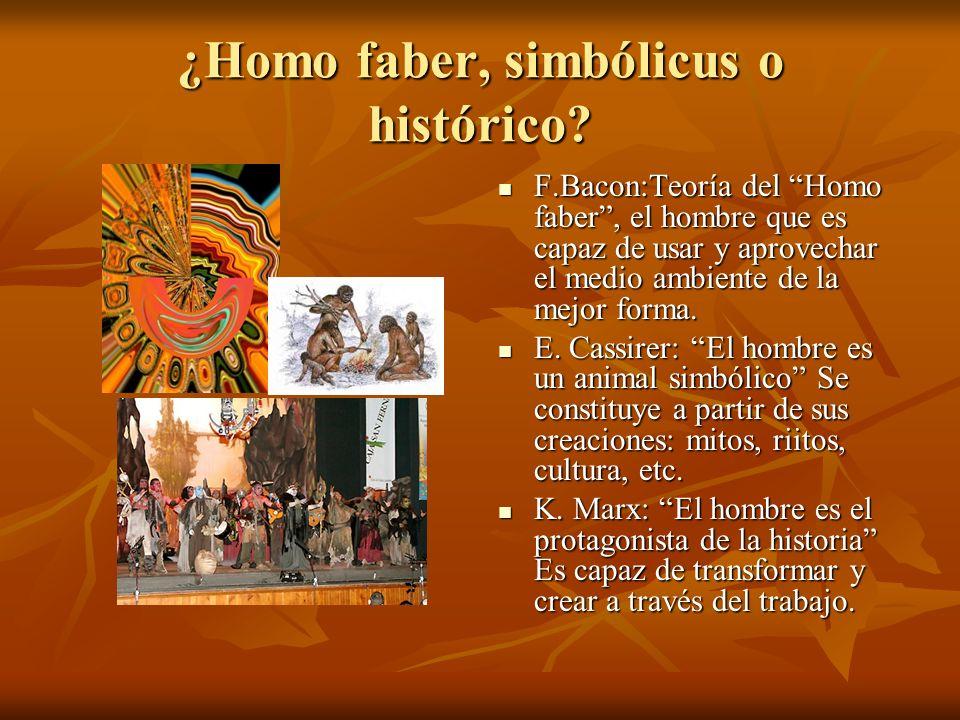 ¿Homo faber, simbólicus o histórico? F.Bacon:Teoría del Homo faber, el hombre que es capaz de usar y aprovechar el medio ambiente de la mejor forma. E