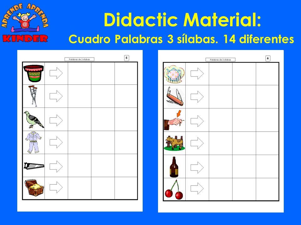 Didactic Material: Cuadro Palabras 2 sílabas. 14 diferentes