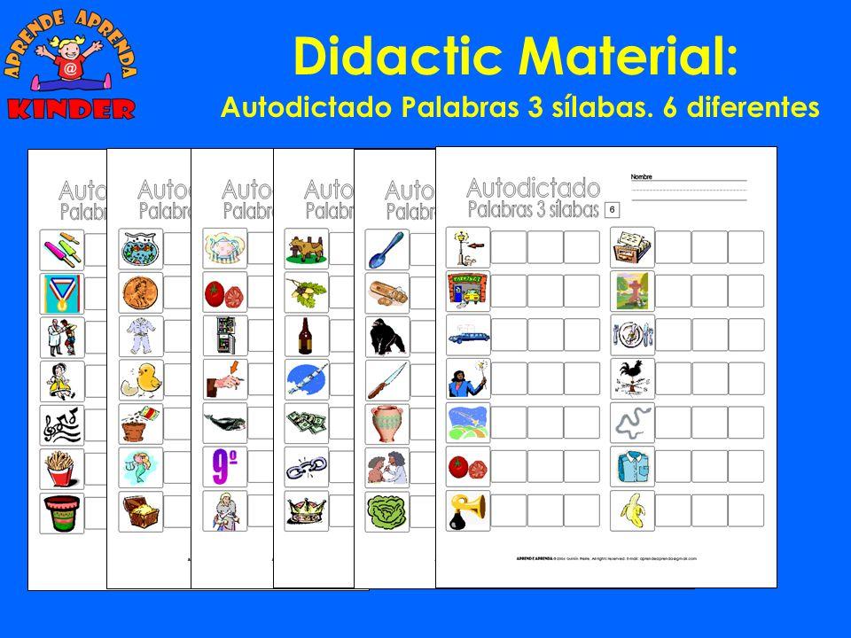 Didactic Material: Autodictado Palabras 2 sílabas. 6 diferentes