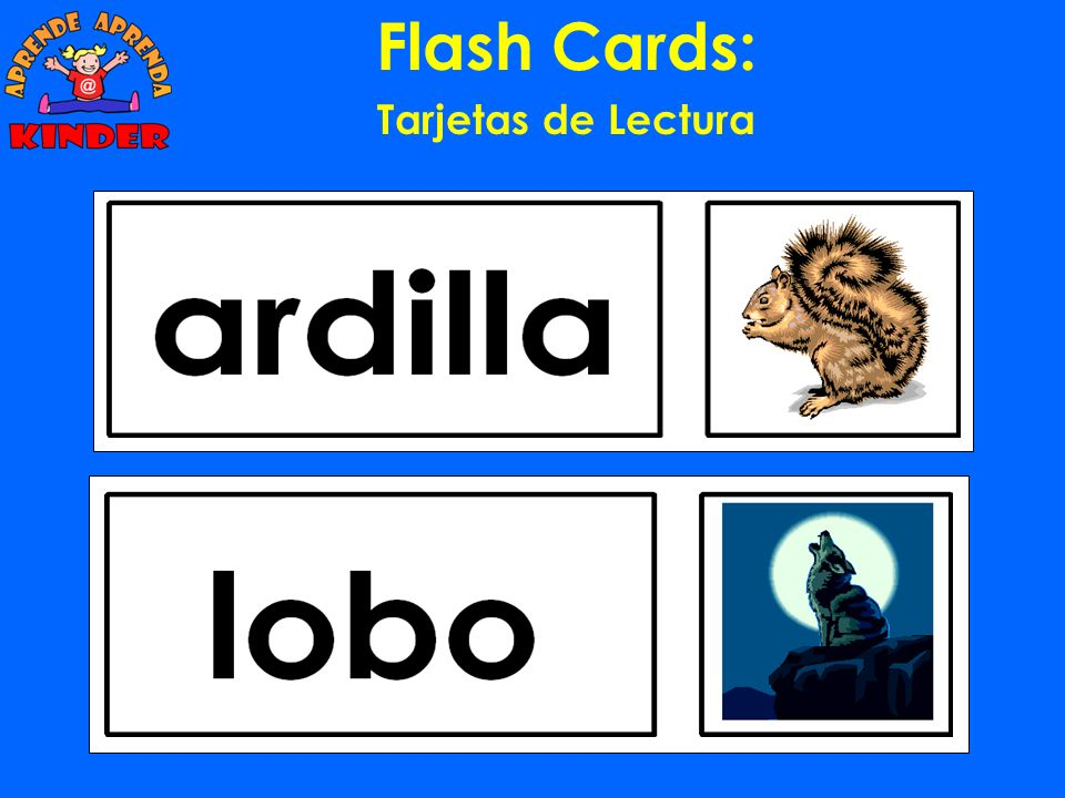 Flash Cards: Tarjetas de Lectura