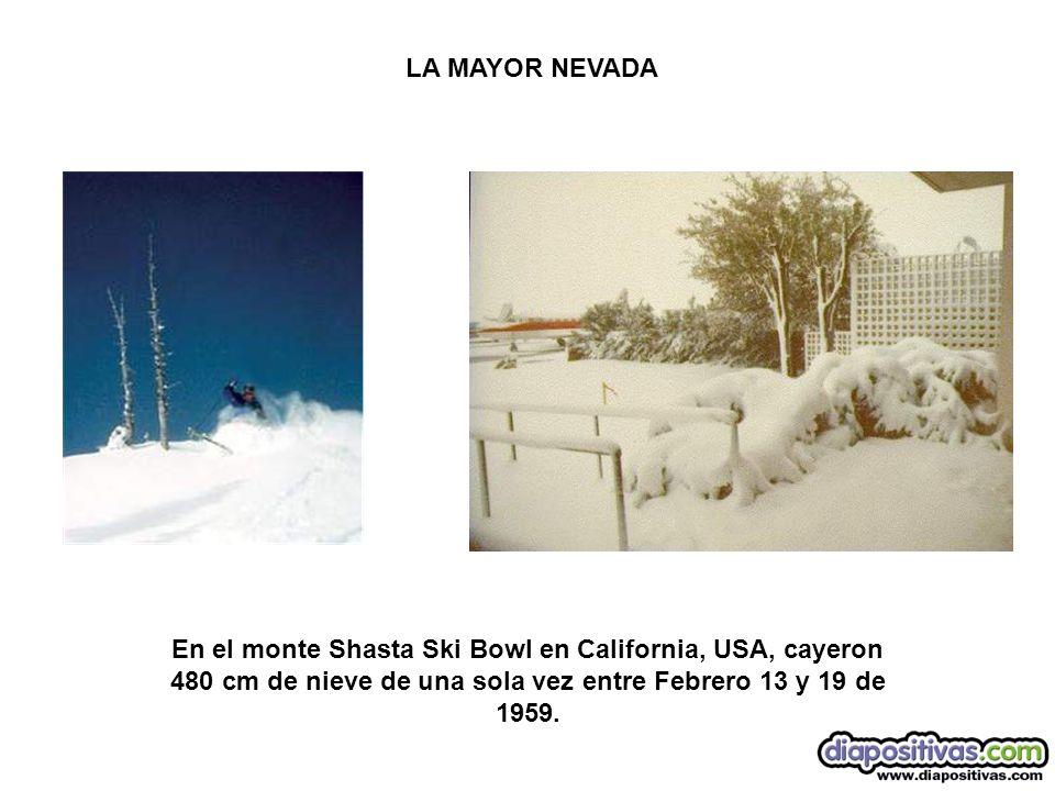 En el monte Shasta Ski Bowl en California, USA, cayeron 480 cm de nieve de una sola vez entre Febrero 13 y 19 de 1959. LA MAYOR NEVADA