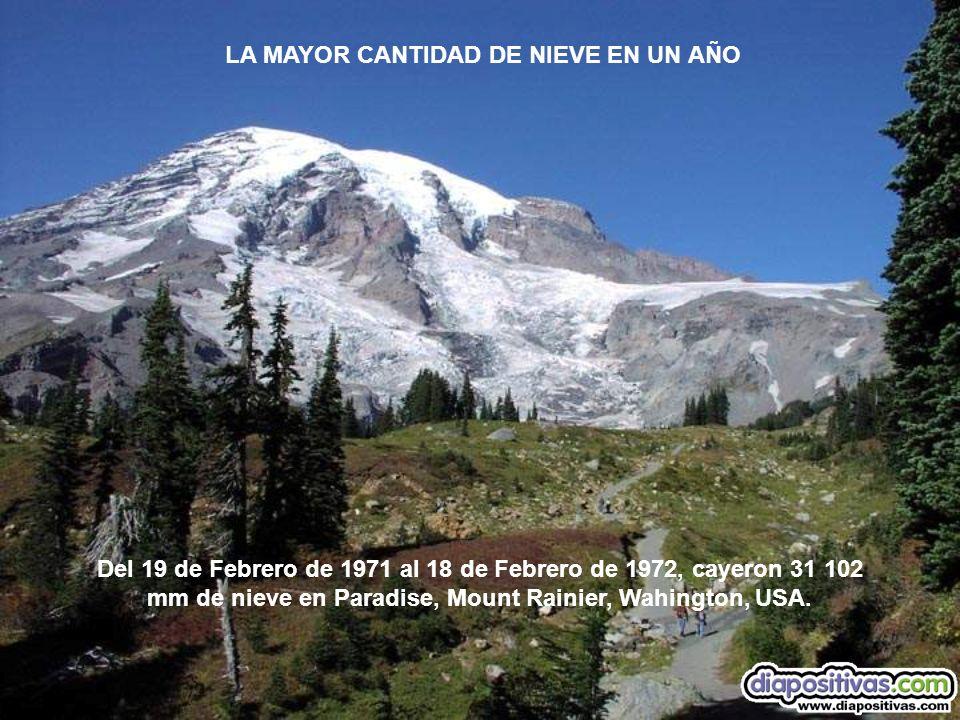 Del 19 de Febrero de 1971 al 18 de Febrero de 1972, cayeron 31 102 mm de nieve en Paradise, Mount Rainier, Wahington, USA. LA MAYOR CANTIDAD DE NIEVE
