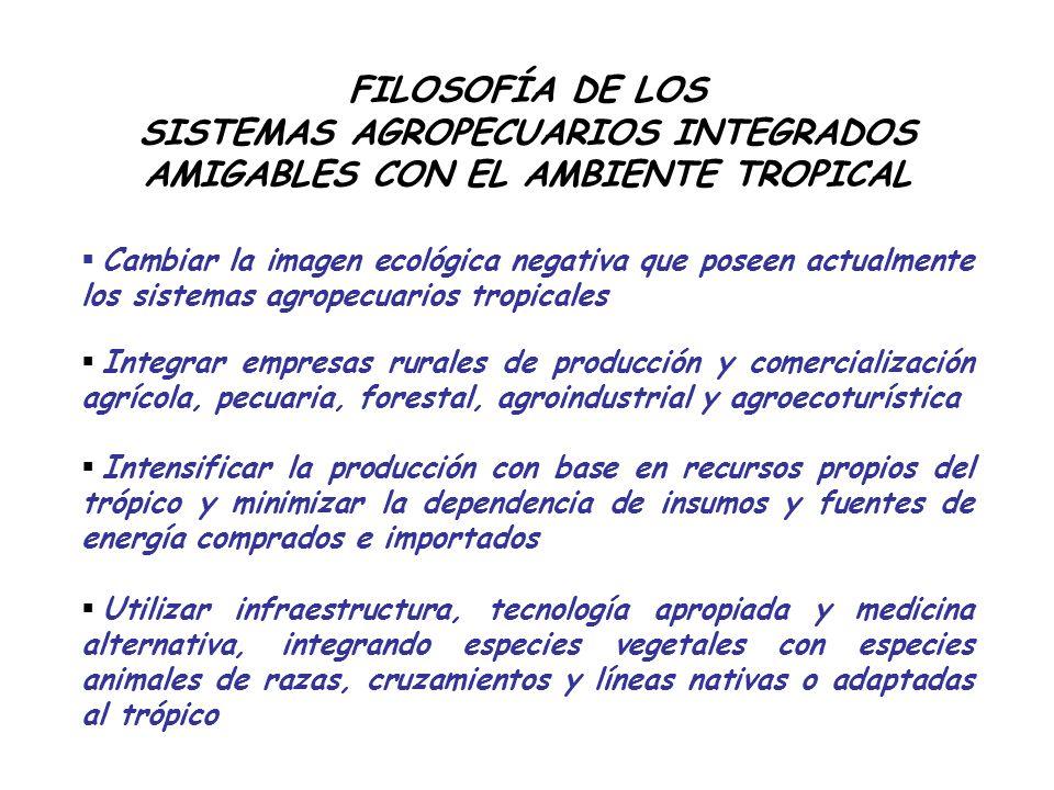 Producción de cerdos en cama blanda en la Universidad EARTH FUENTE: Echeverry, R. 2008.