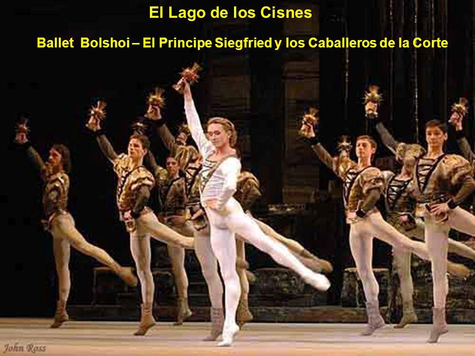 Ballet Bolshoi Dmitri Gudanov como Principe Siegfried El lago de los Cisnes
