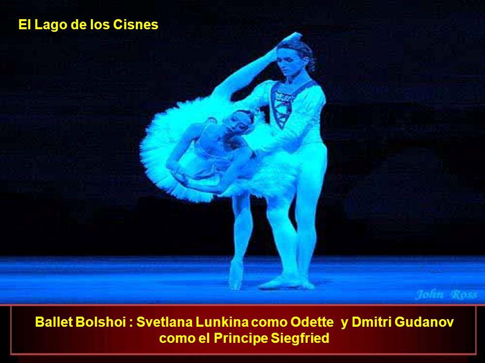 Ballet Bolshoi Viacheslav Lopatin como el Bufón de la Corte El Lago de los Cisnes