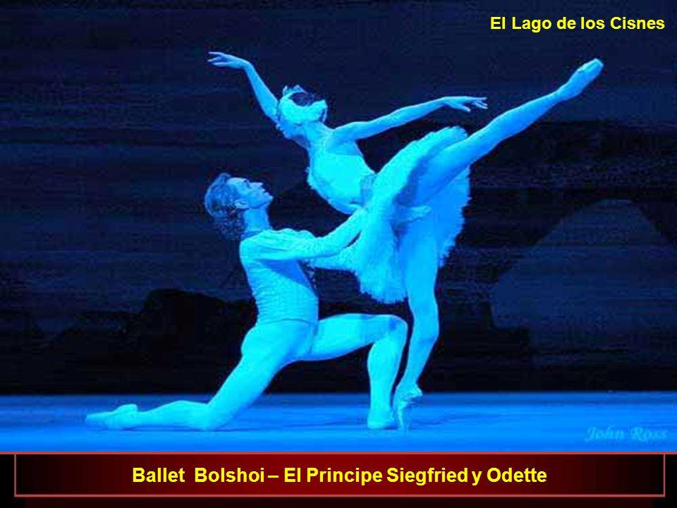 Ballet Bolshoi : Svetlana Lunkina como Odette y Dmitri Gudanov como el Principe Siegfried El Lago de los Cisnes