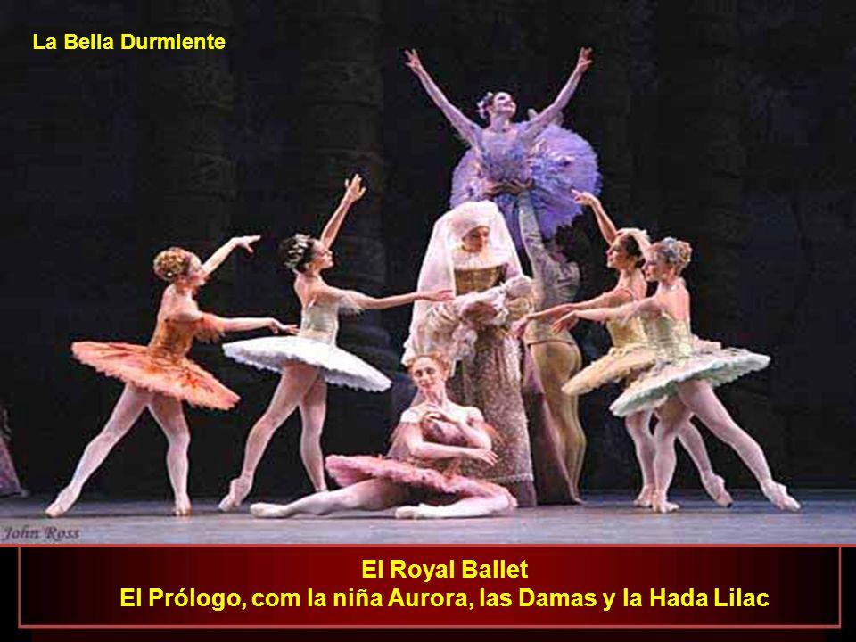 La Bella Durmiente En el apoteótico Balet de La Bella Durmiente, Kirov y Mariinsky se lucen en San Petersburgo en 1890