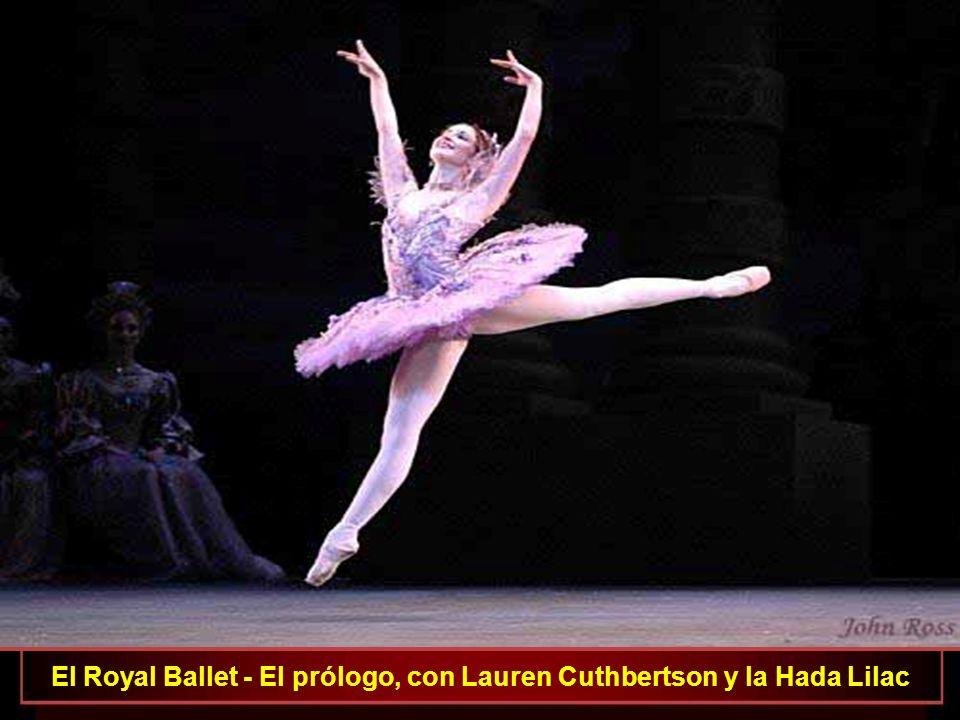 El Royal Ballet El Prólogo, com la niña Aurora, las Damas y la Hada Lilac La Bella Durmiente