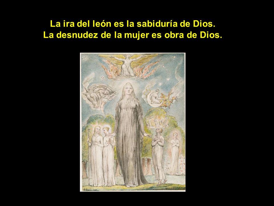 El orgullo del pavo real es la gloria de Dios. La lujurias del chivo es la generosidad de Dios.