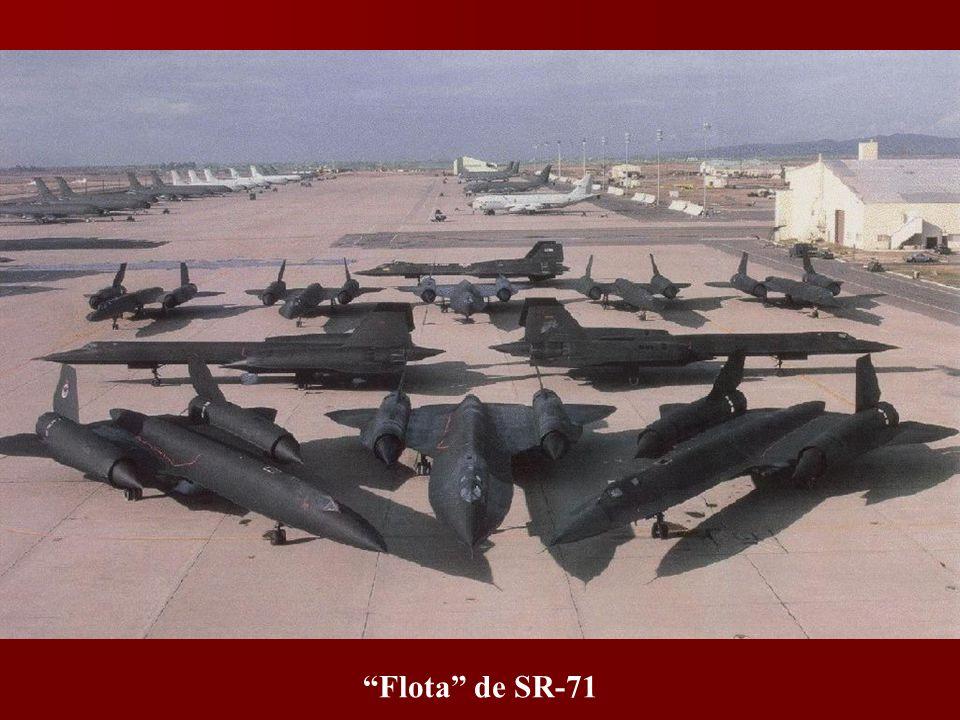 F-22, en patrulla.