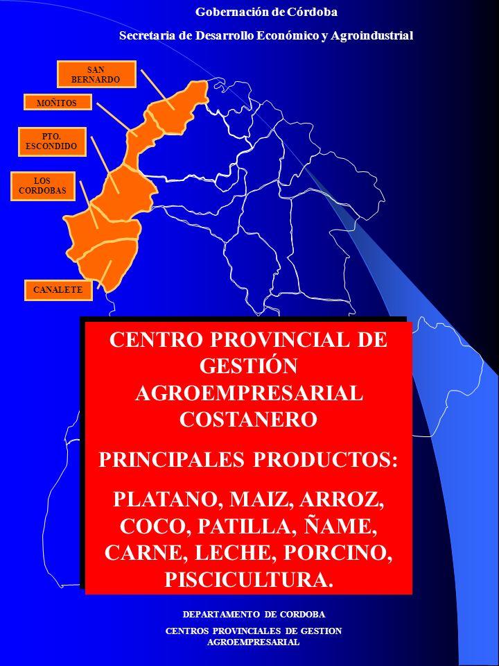 Gobernación de Córdoba Secretaria de Desarrollo Económico y Agroindustrial Prioridad de Debilidades