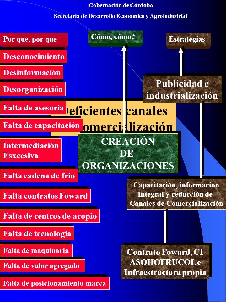 Gobernación de Córdoba Secretaria de Desarrollo Económico y Agroindustrial Deficientes canales De Comercialización Deficientes canales De Comercialización Por qué, por que Cómo, cómo.
