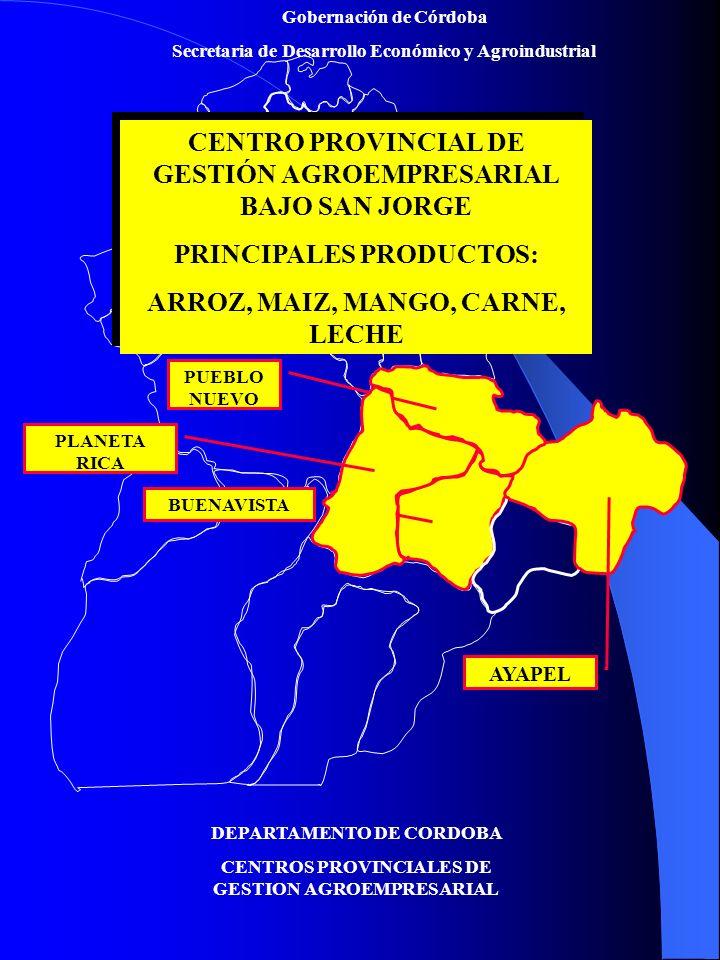 Gobernación de Córdoba Secretaria de Desarrollo Económico y Agroindustrial DEPARTAMENTO DE CORDOBA CENTROS PROVINCIALES DE GESTION AGROEMPRESARIAL CENTRO PROVINCIAL DE GESTIÓN AGROEMPRESARIAL BAJO SAN JORGE PRINCIPALES PRODUCTOS: ARROZ, MAIZ, MANGO, CARNE, LECHE CENTRO PROVINCIAL DE GESTIÓN AGROEMPRESARIAL BAJO SAN JORGE PRINCIPALES PRODUCTOS: ARROZ, MAIZ, MANGO, CARNE, LECHE BUENAVISTA AYAPEL PUEBLO NUEVO PLANETA RICA