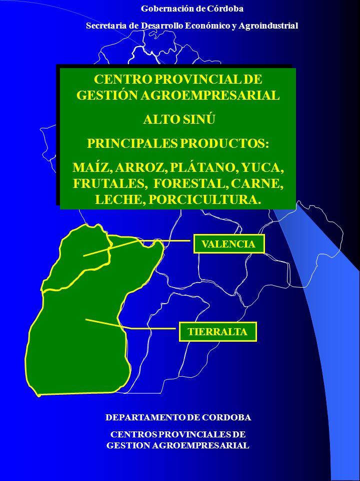 Gobernación de Córdoba Secretaria de Desarrollo Económico y Agroindustrial DEPARTAMENTO DE CORDOBA CENTROS PROVINCIALES DE GESTION AGROEMPRESARIAL CENTRO PROVINCIAL DE GESTIÓN AGROEMPRESARIAL SINÚ MEDIO PRINCIPALES PRODUCTOS: MAÍZ, ALGODÓN, HORTALIZAS, FRUTAS, CARNE, LECHE, PORCICULTURA Y AVICULTURA.