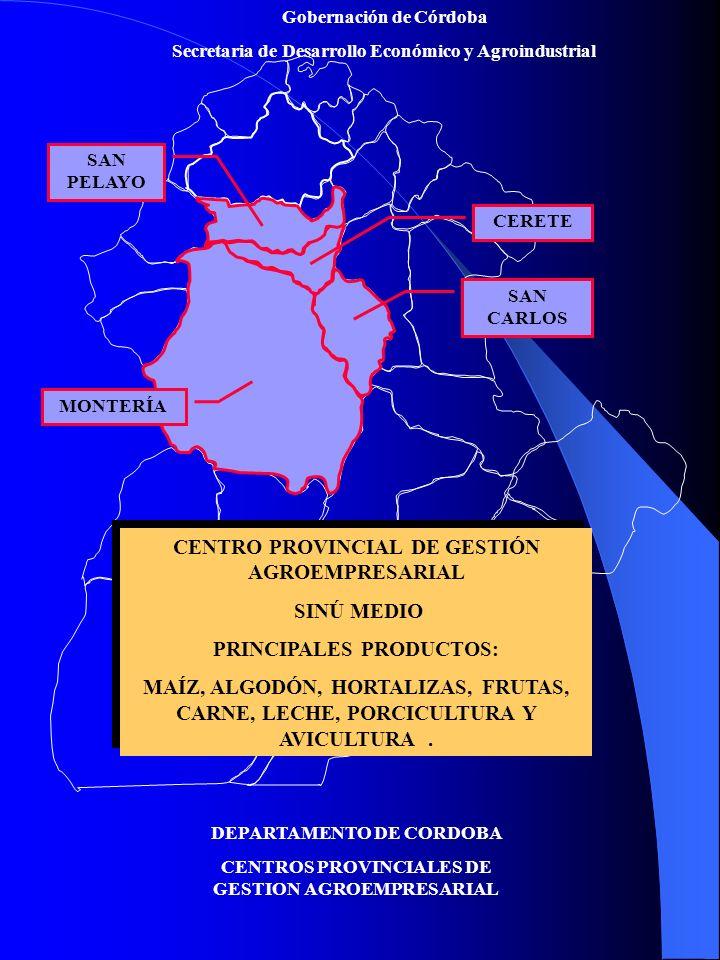 Gobernación de Córdoba Secretaria de Desarrollo Económico y Agroindustrial Falta de Visión Empresarial Falta de Visión Empresarial Por qué, por que Cómo, cómo.