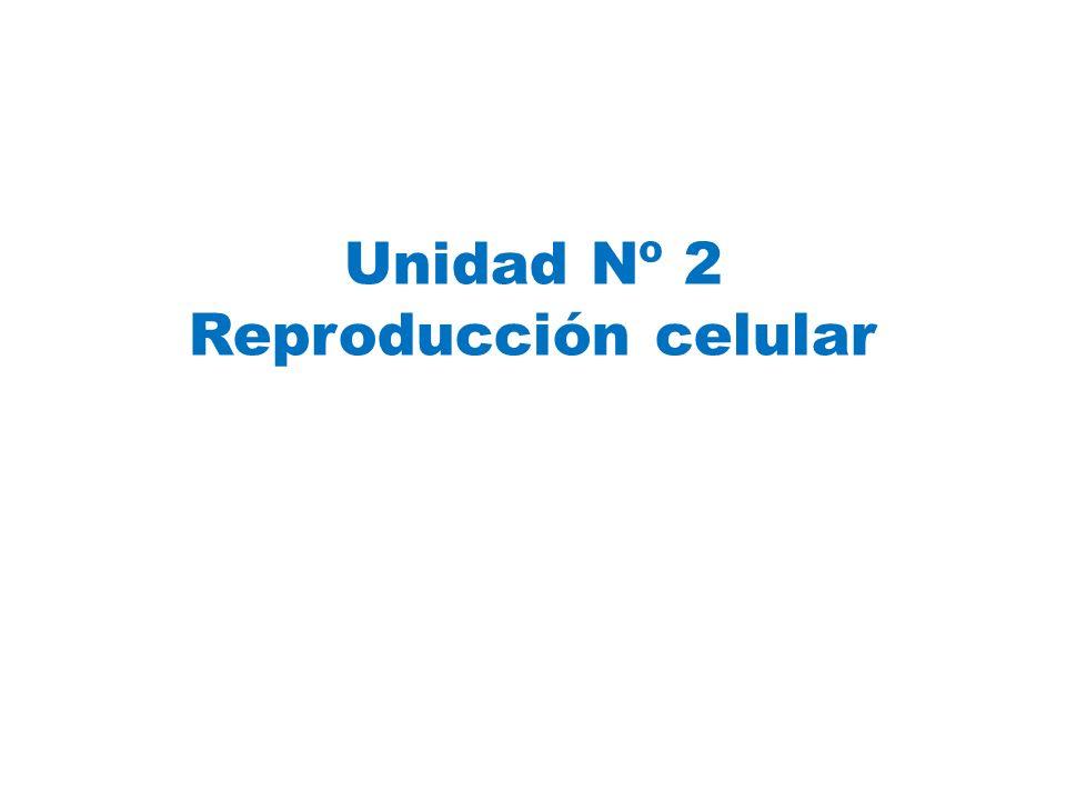 Unidad Nº 2 Reproducción celular