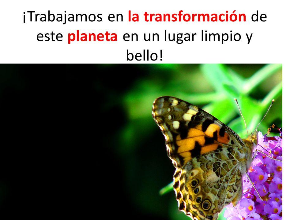 ¡Trabajamos en la transformación de este planeta en un lugar limpio y bello! transformación