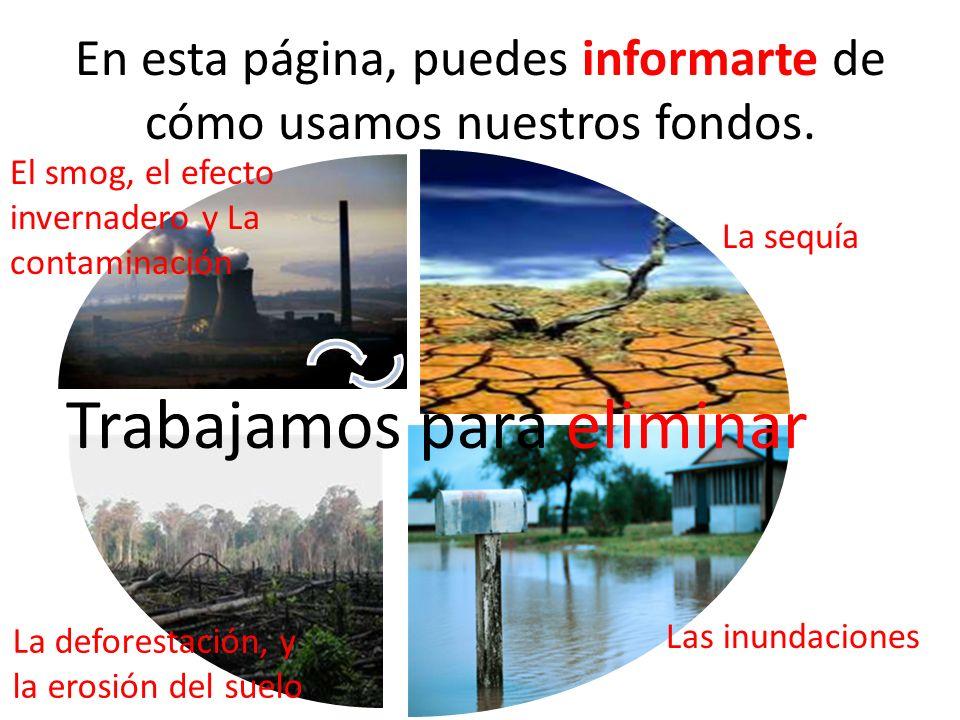 En esta página, puedes informarte de cómo usamos nuestros fondos. Las inundaciones La sequía El smog, el efecto invernadero y La contaminación La defo