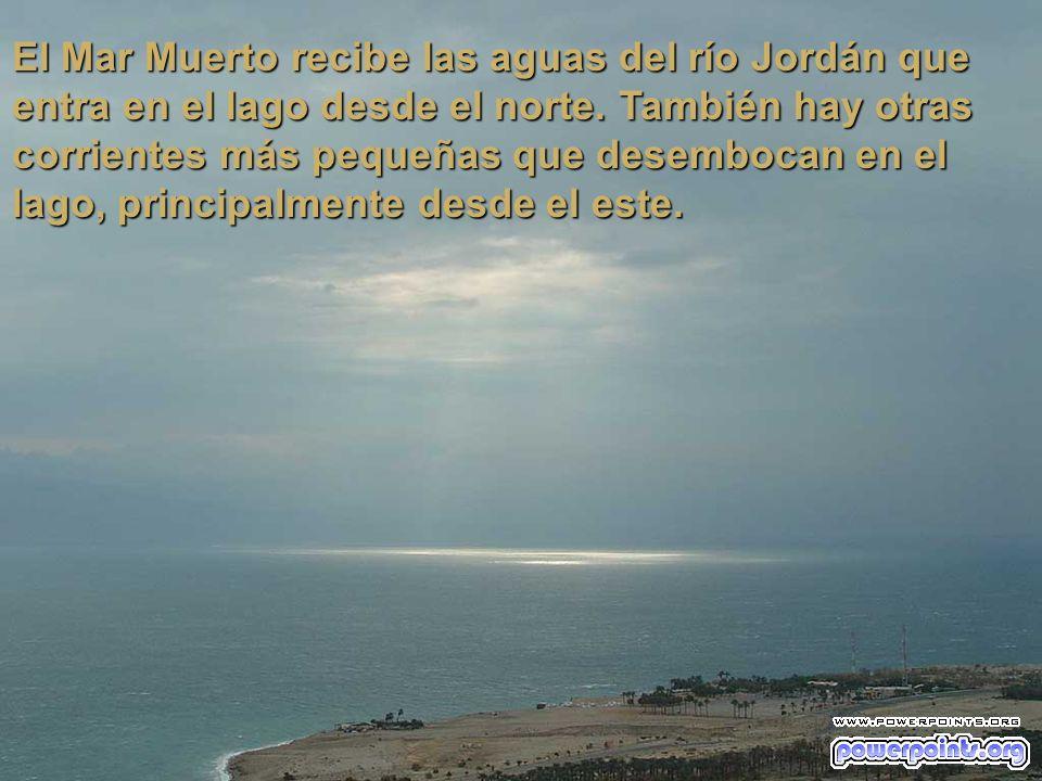 El Mar Muerto tiene 76 kilómetros de largo y un ancho máximo de 16 kilómetros. Su superficie aproximada es de 1049 kilómetros cuadrados.