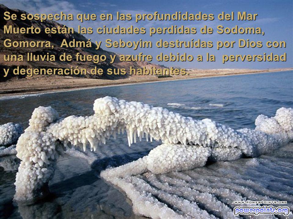 Las aguas del Mar Muerto en su sector norte tienen una profundidad de 396 metros, en el sur en cambio es poco profundo, con menos de 6 metros.