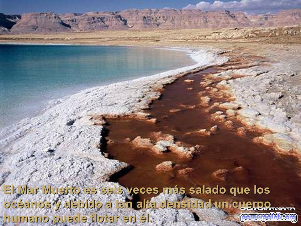 Al este del Mar Muerto se eleva la meseta de Moab que tiene una altura de 1340 metros sobre el nivel del mar. Al oeste se encuentra la meseta de Judea