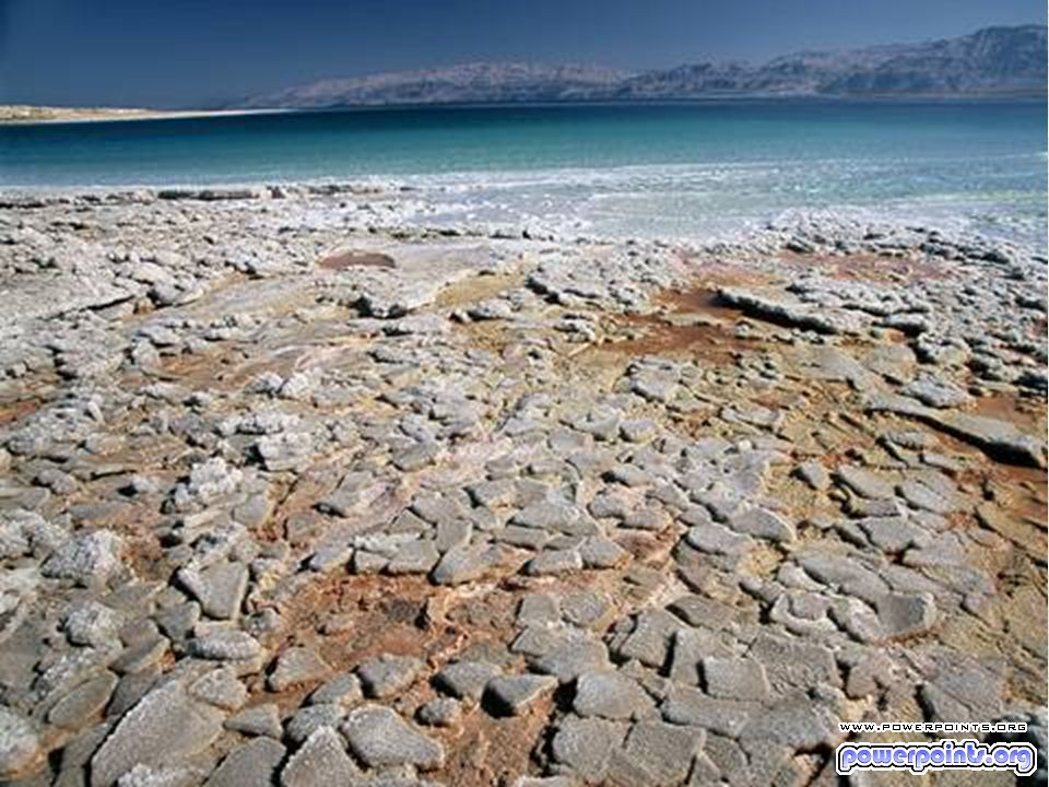 El Mar Muerto es seis veces más salado que los océanos y debido a tan alta densidad un cuerpo humano puede flotar en él.