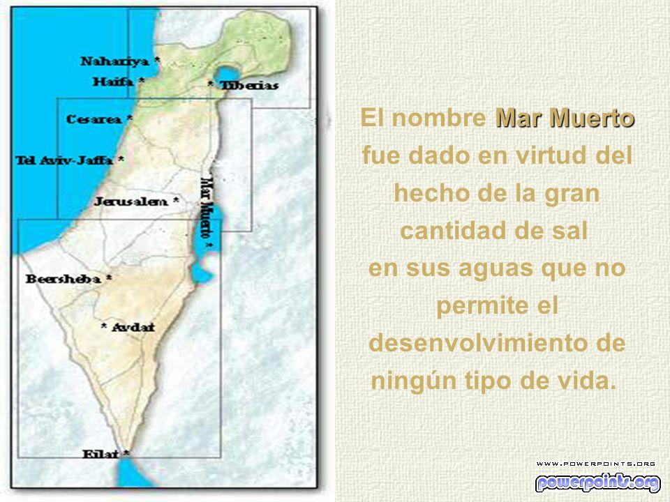Mar Muerto La concentración media de sales minerales en el Mar Muerto es es de 280 gramos por litro, cuando la media general del índice de salinizació