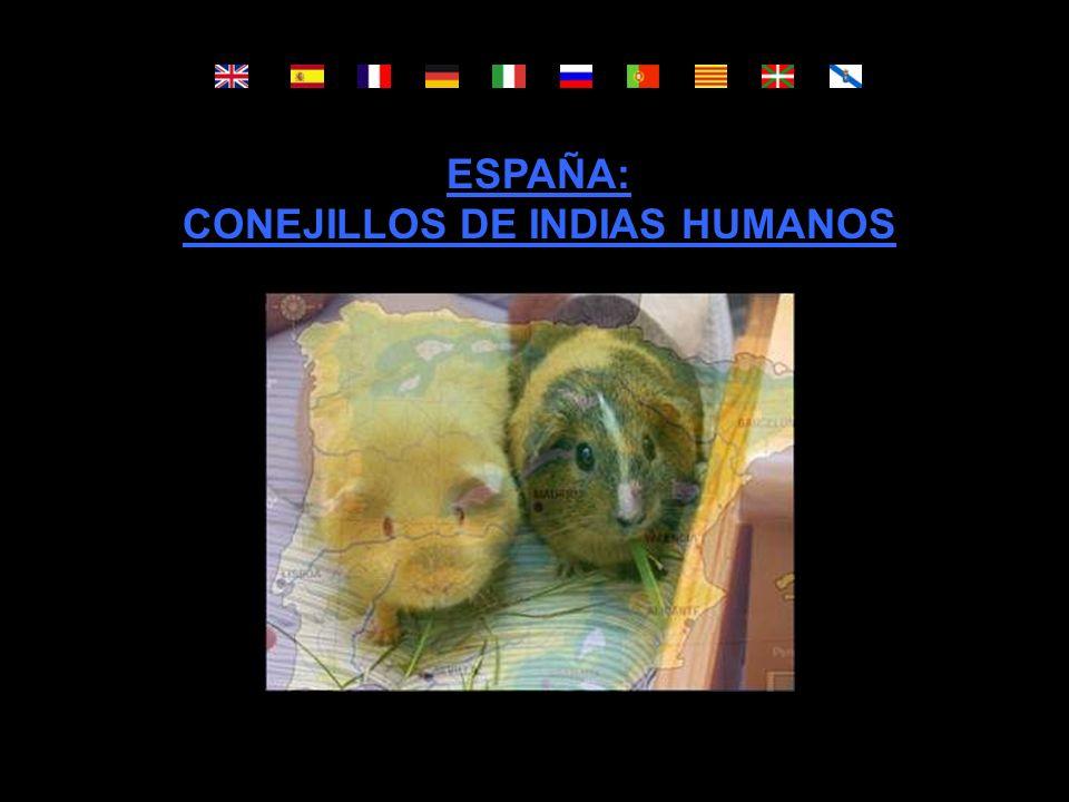 ESPAÑA: CONEJILLOS DE INDIAS HUMANOS