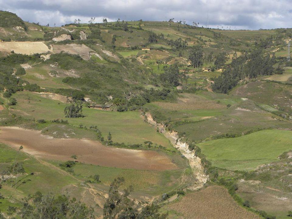 TANBO RREAL GUANBO EL CAMINO REAL
