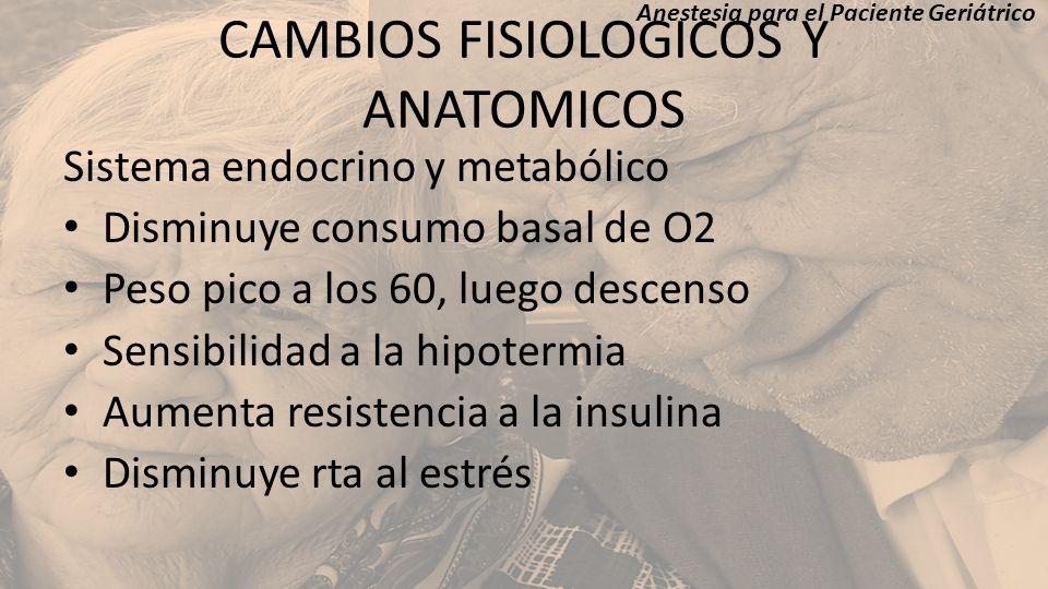 CAMBIOS FISIOLOGICOS Y ANATOMICOS Sistema endocrino y metabólico Disminuye consumo basal de O2 Peso pico a los 60, luego descenso Sensibilidad a la hi
