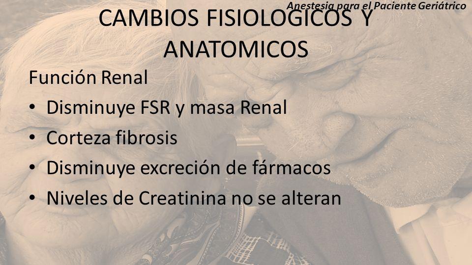 CAMBIOS FISIOLOGICOS Y ANATOMICOS Función Renal Disminuye FSR y masa Renal Corteza fibrosis Disminuye excreción de fármacos Niveles de Creatinina no s