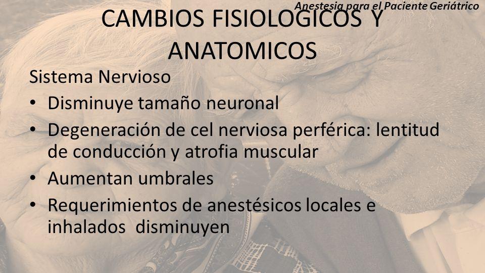CAMBIOS FISIOLOGICOS Y ANATOMICOS Sistema Nervioso Disminuye tamaño neuronal Degeneración de cel nerviosa perférica: lentitud de conducción y atrofia