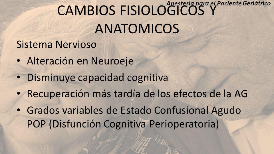 CAMBIOS FISIOLOGICOS Y ANATOMICOS Sistema Nervioso Alteración en Neuroeje Disminuye capacidad cognitiva Recuperación más tardía de los efectos de la A