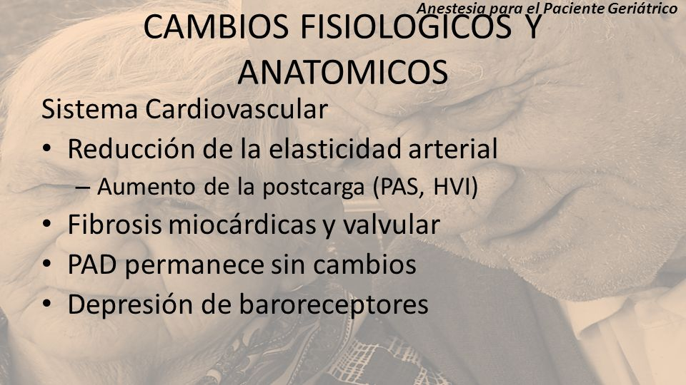 CAMBIOS FISIOLOGICOS Y ANATOMICOS Sistema Cardiovascular Reducción de la elasticidad arterial – Aumento de la postcarga (PAS, HVI) Fibrosis miocárdica