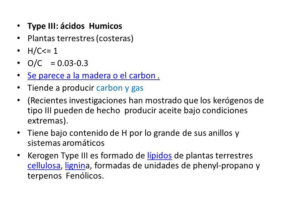 Type III: ácidos Humicos Plantas terrestres (costeras) H/C<= 1 O/C = 0.03-0.3 Se parece a la madera o el carbon. Se parece a la madera o el carbon Tie