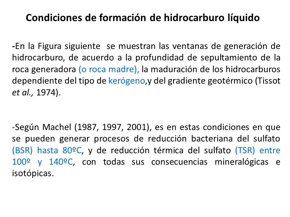 -En la Figura siguiente se muestran las ventanas de generación de hidrocarburo, de acuerdo a la profundidad de sepultamiento de la roca generadora (o
