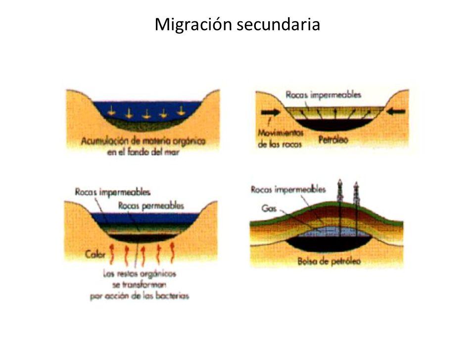Migración secundaria