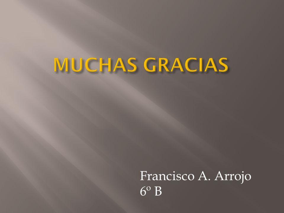 Francisco A. Arrojo 6º B