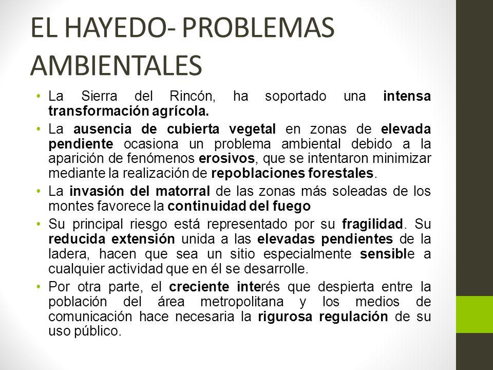 EL HAYEDO- PROBLEMAS AMBIENTALES La Sierra del Rincón, ha soportado una intensa transformación agrícola.