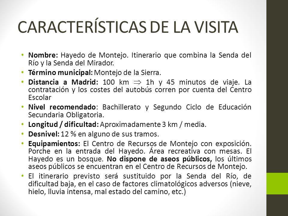 CARACTERÍSTICAS DE LA VISITA Salida del Centro : 8.00 Llegada al Centro: 16.00 Llegada a Montejo de la Sierra: El equipo educativo del CEA Hayedo de Montejo esperará al grupo en el Centro de Recursos en Montejo de la Sierra desde las 10 hasta las 10.30.
