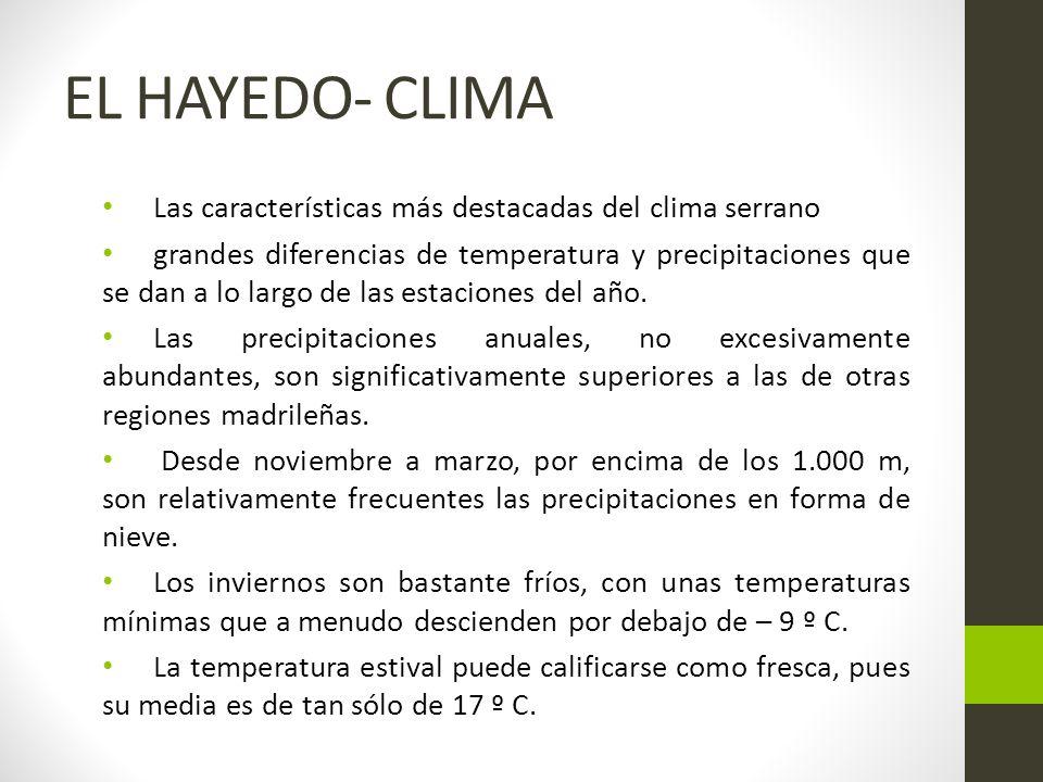 EL HAYEDO- CLIMA Las características más destacadas del clima serrano grandes diferencias de temperatura y precipitaciones que se dan a lo largo de las estaciones del año.