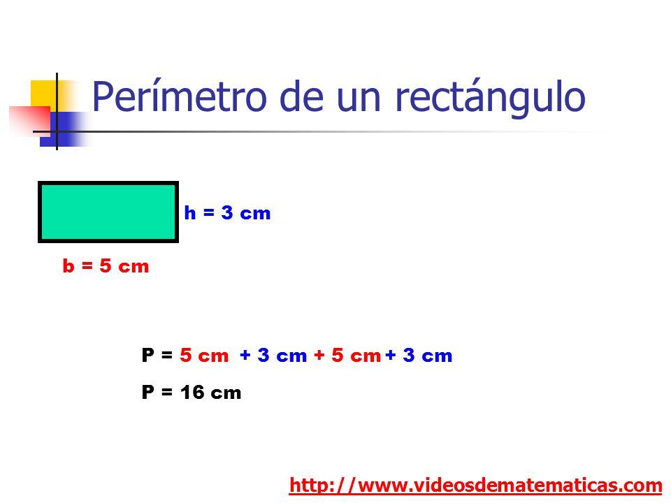 Perímetro de un rectángulo http://www.videosdematematicas.com b = 5 cm h = 3 cm P = 5 cm+ 5 cm+ 3 cm P = 16 cm