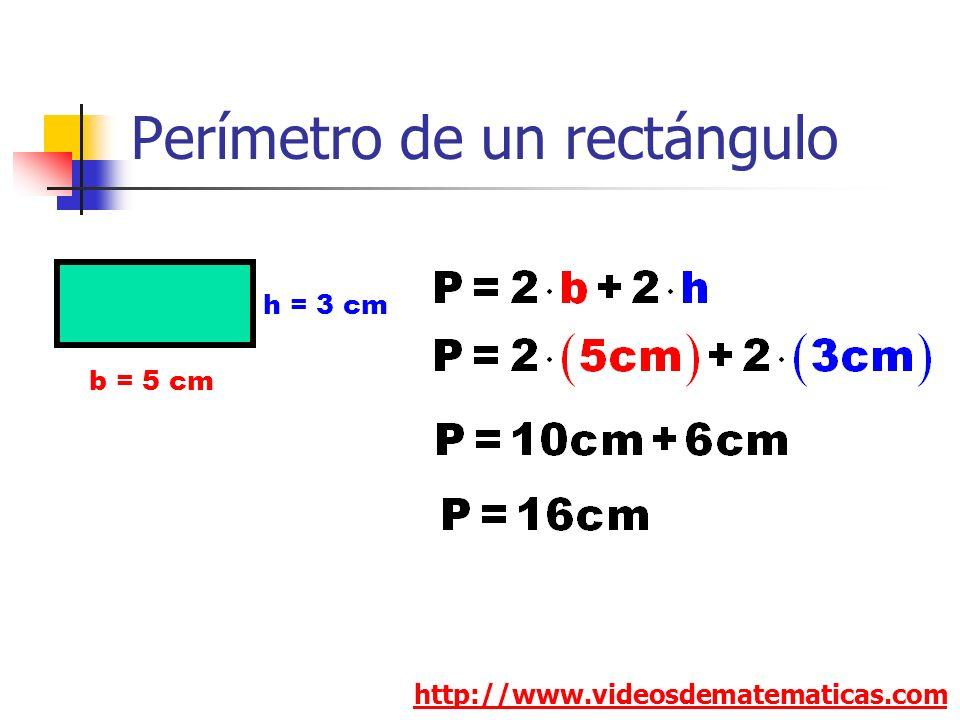 Perímetro de un rectángulo http://www.videosdematematicas.com b = 5 cm h = 3 cm