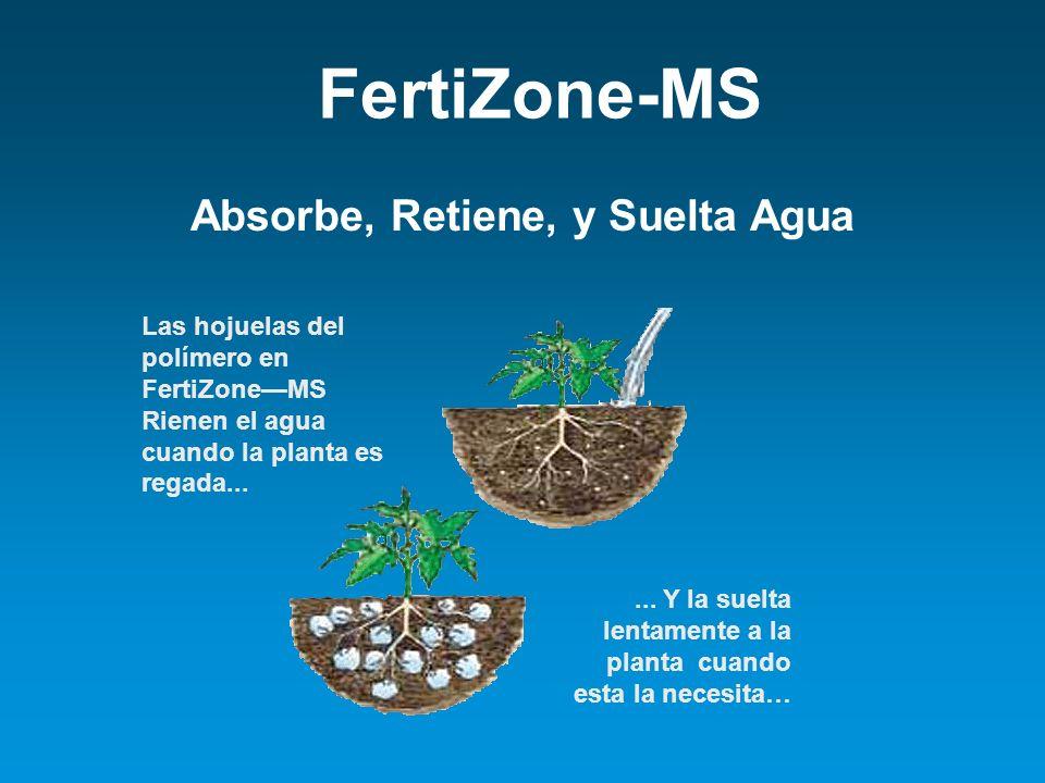 Absorbe, Retiene, y Suelta Agua Las hojuelas del polímero en FertiZoneMS Rienen el agua cuando la planta es regada...... Y la suelta lentamente a la p