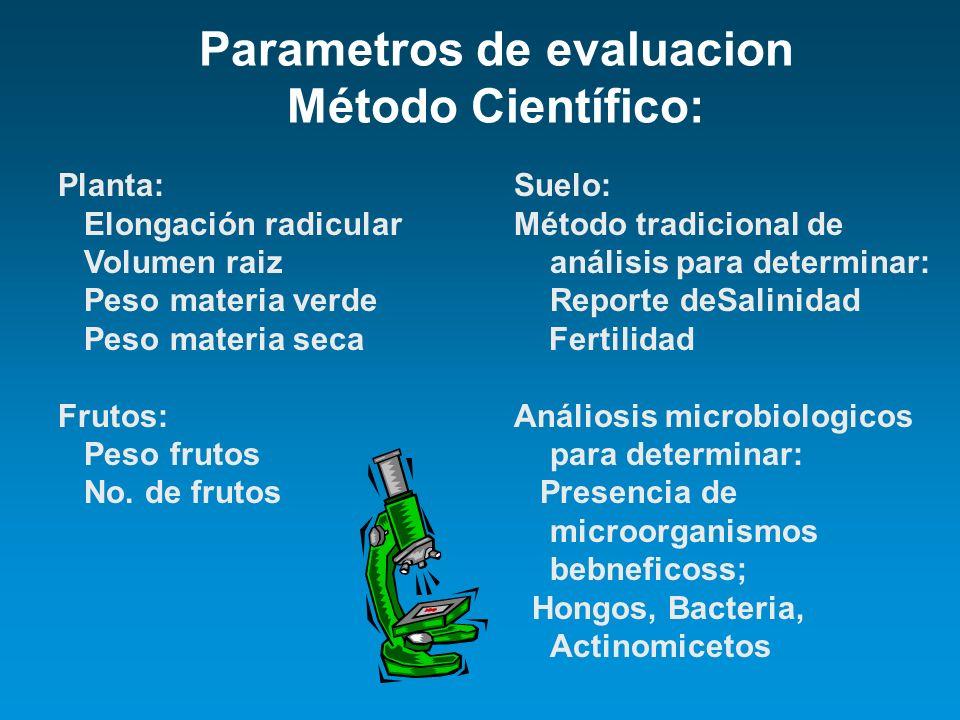 Parametros de evaluacion Método Científico: Planta: Elongación radicular Volumen raiz Peso materia verde Peso materia seca Frutos: Peso frutos No. de